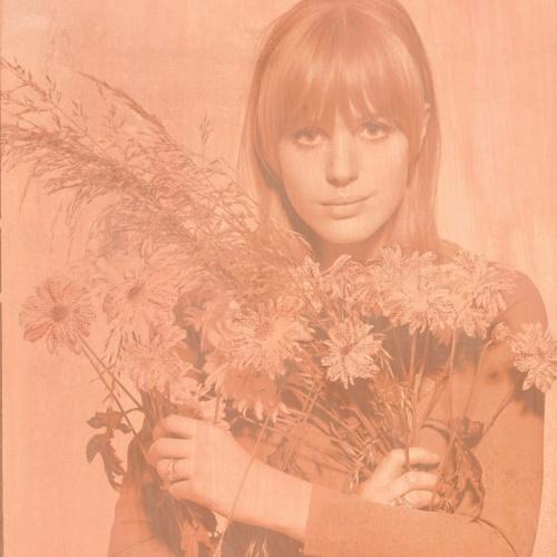 Marianne Flowers – Powder Peach 2017