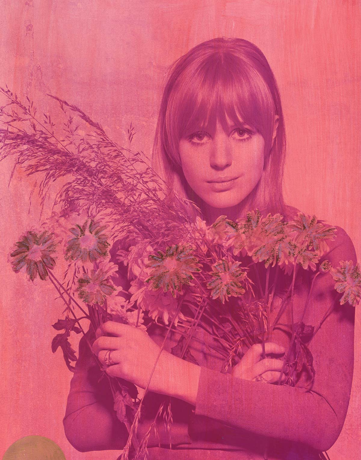 Marianne Flowers – Madder Violet 2017  featuring Marianne Faithfull