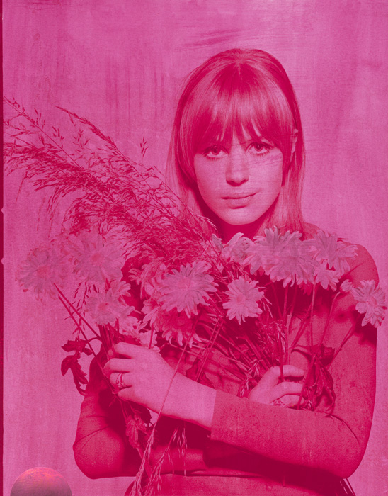 Marianne Faithful Electric Pink