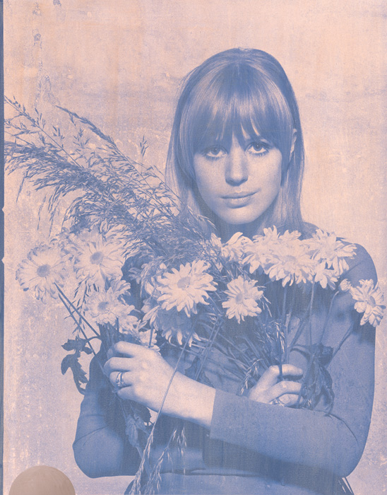 Marianne Faithfull Rose Blue