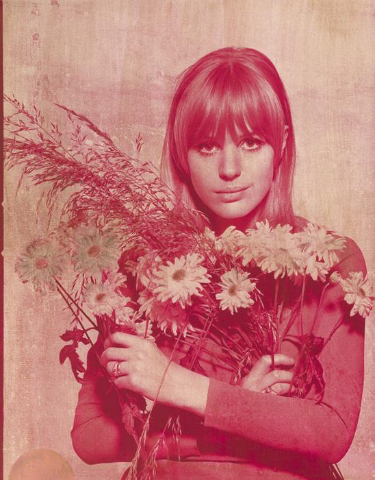 Marianne Faithfull Rose Gold