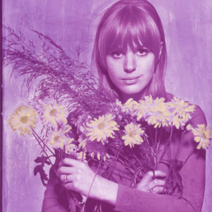 Marianne Flowers – Electric Violet